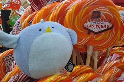 Boo in Las Vegas